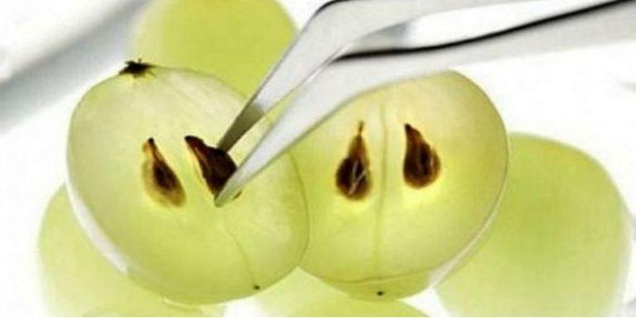 Nasiona winogron lepsze niż chemioterapia