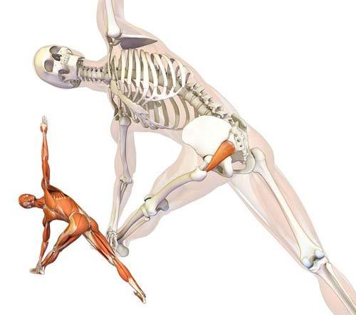 leczenie mięśnia gruszkowatego