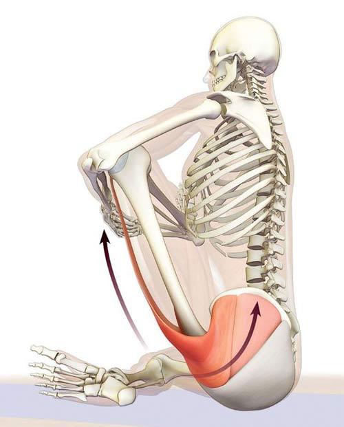 objawy mięśnia gruszkowatego