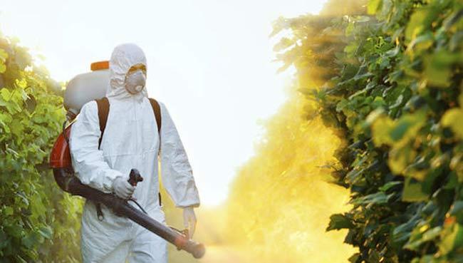Szkodliwe pestycydy