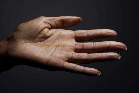 linie na dłoniach