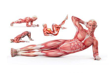 Wzmocnij mięśnie brzucha i zwalcz ból pleców. Poznaj 11 ćwiczeń