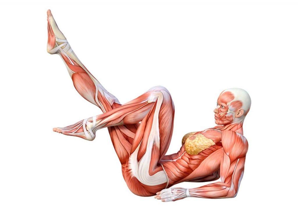 Rowerek - ćwiczenia na brzuch