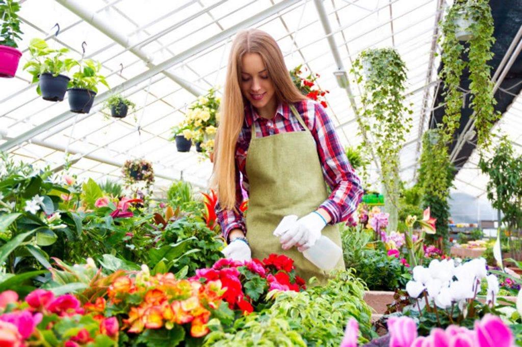 praca przy kwiatach