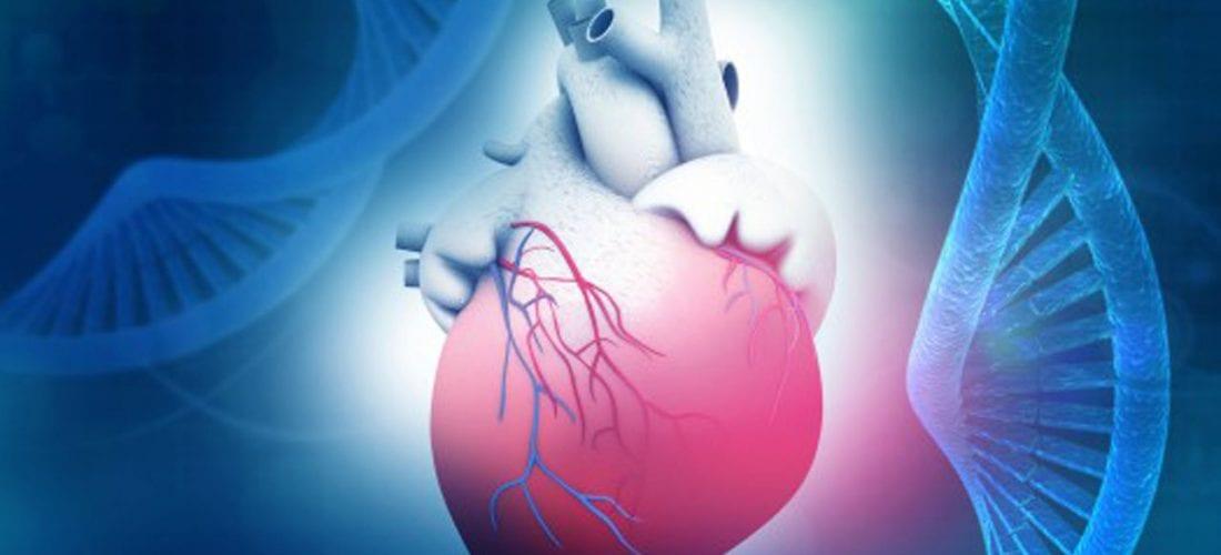 Kardiomiopatia objawy i leczenie