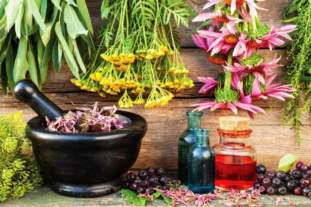 Domowe leczenie środkami ziołowymi