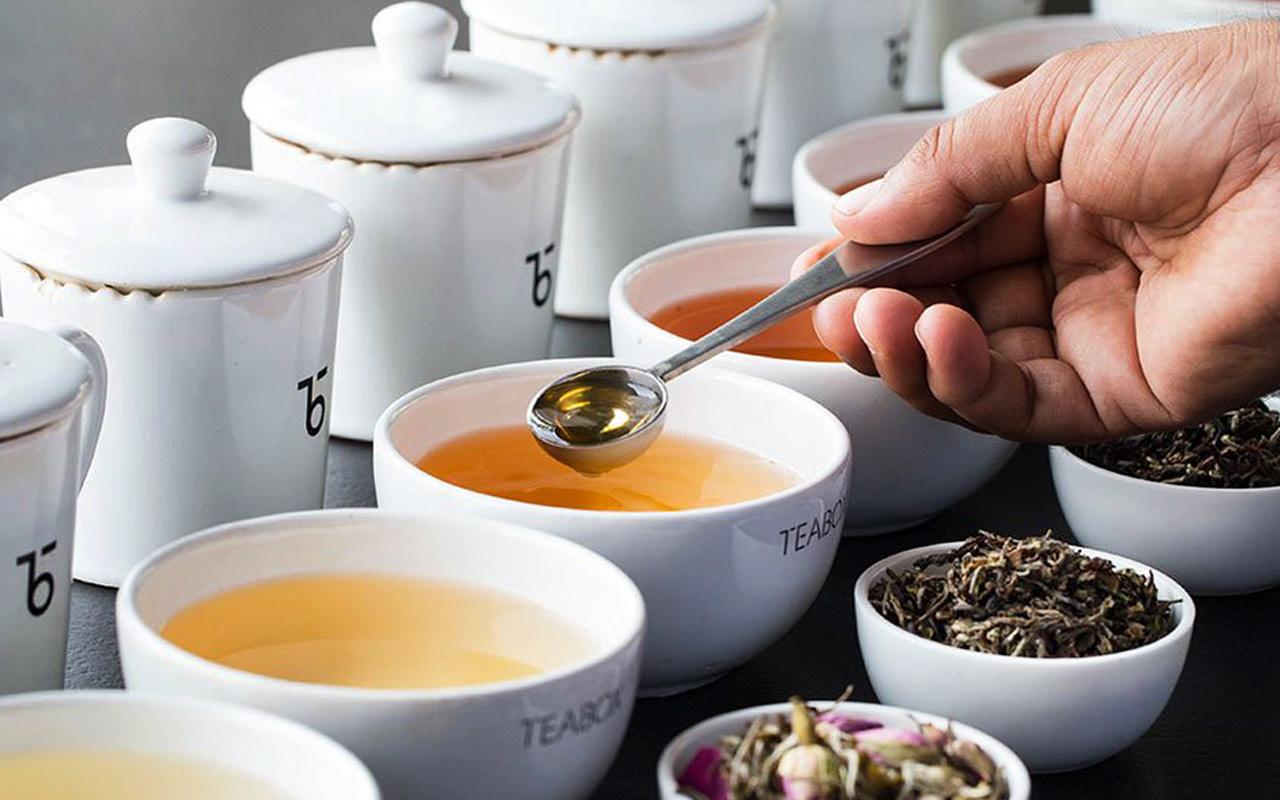Herbata - wszystko co musisz o niej wiedzieć