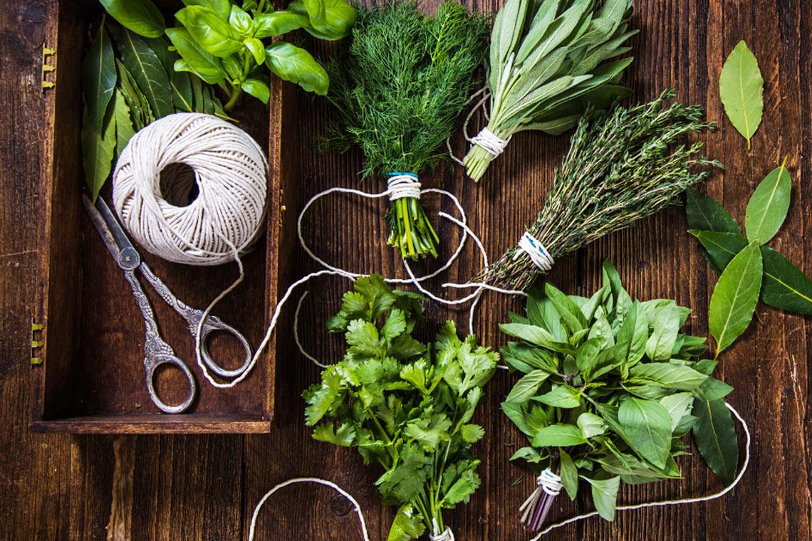 Jak przygotować zioła na własny użytek?