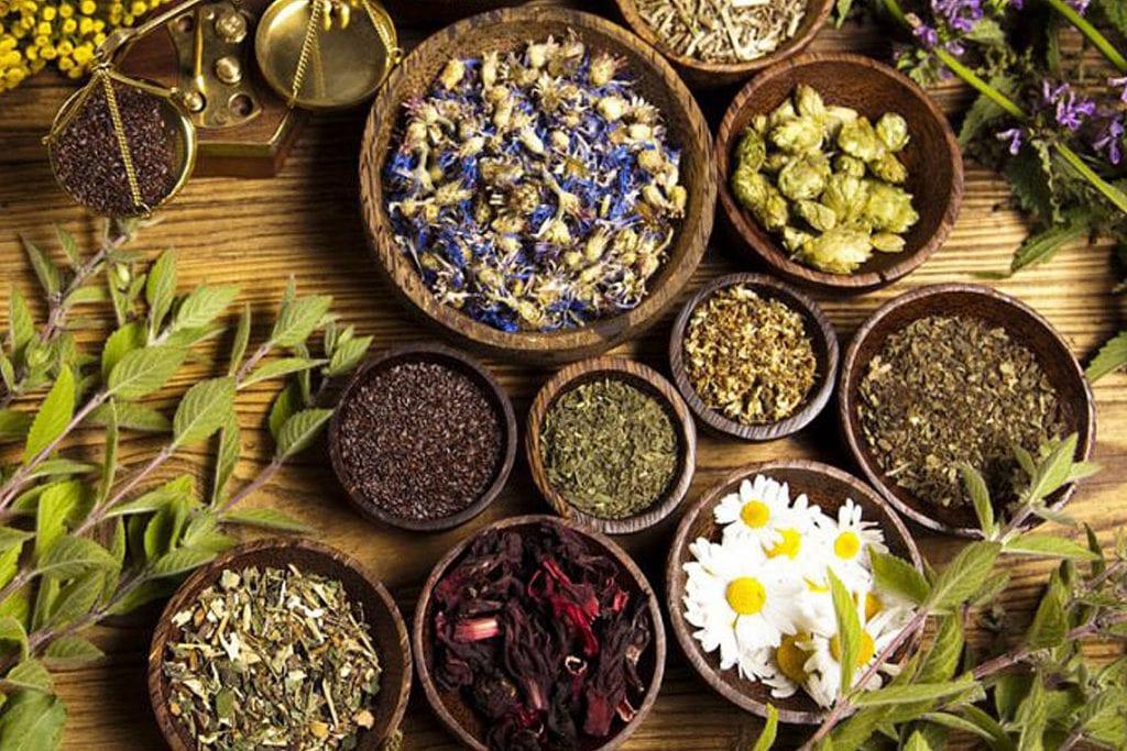 Jakie są rodzaje środków ziołowych?