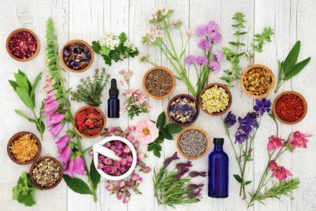 Składniki roślin i ziół leczniczych