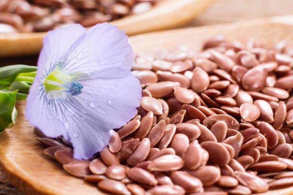 Zastosowanie nasion lnu w lecznictwie