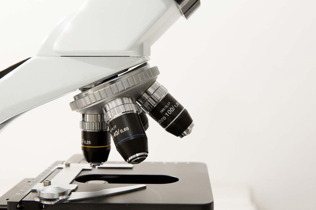 Co wskazuje morfologia krwi?